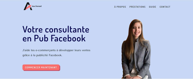 L'en-tête du site internet d'Ana